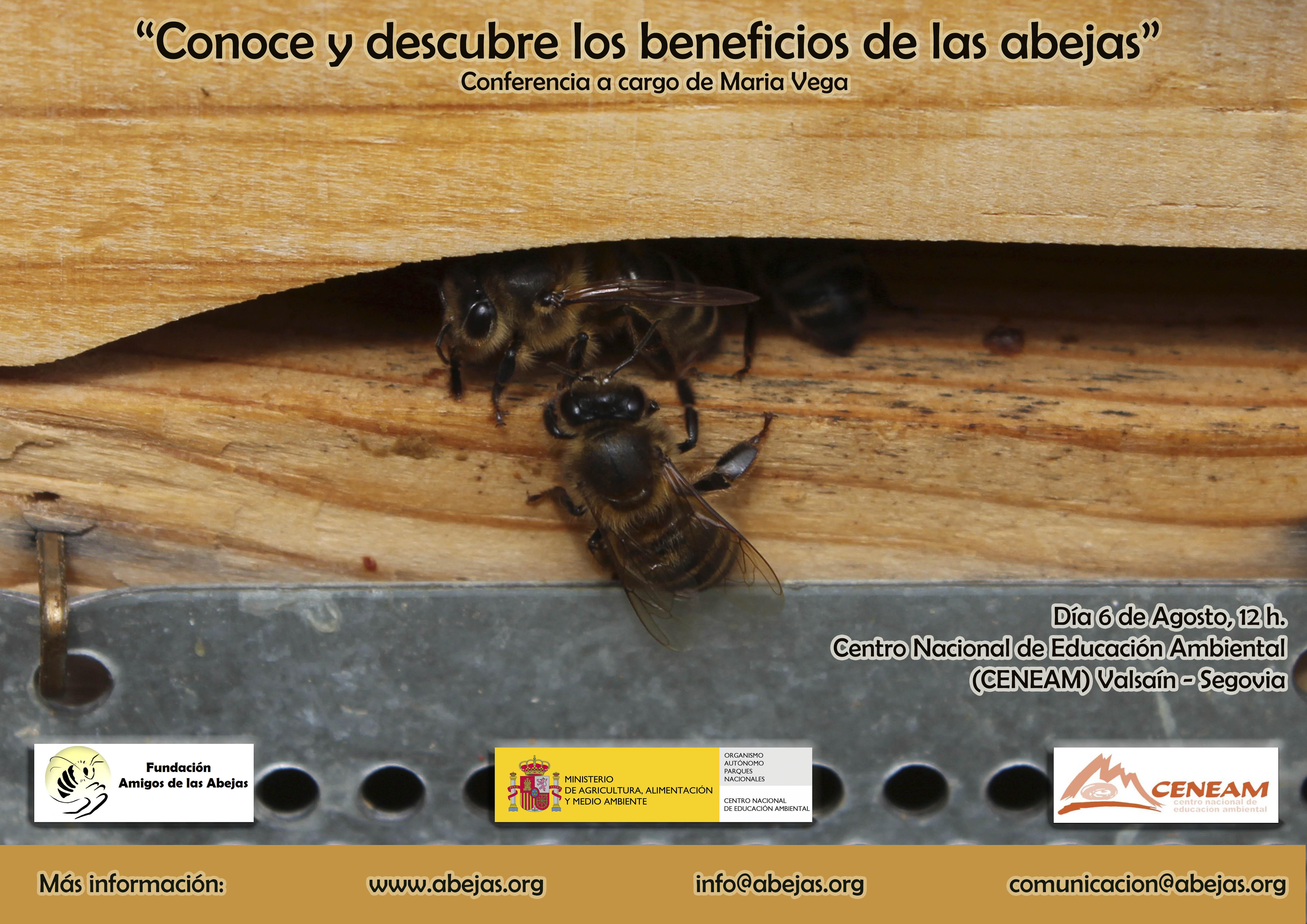 Conoce y descubre los beneficios de las abejas. Ciclo conferencias ...
