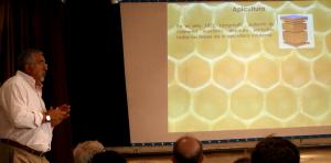 mundo abeja