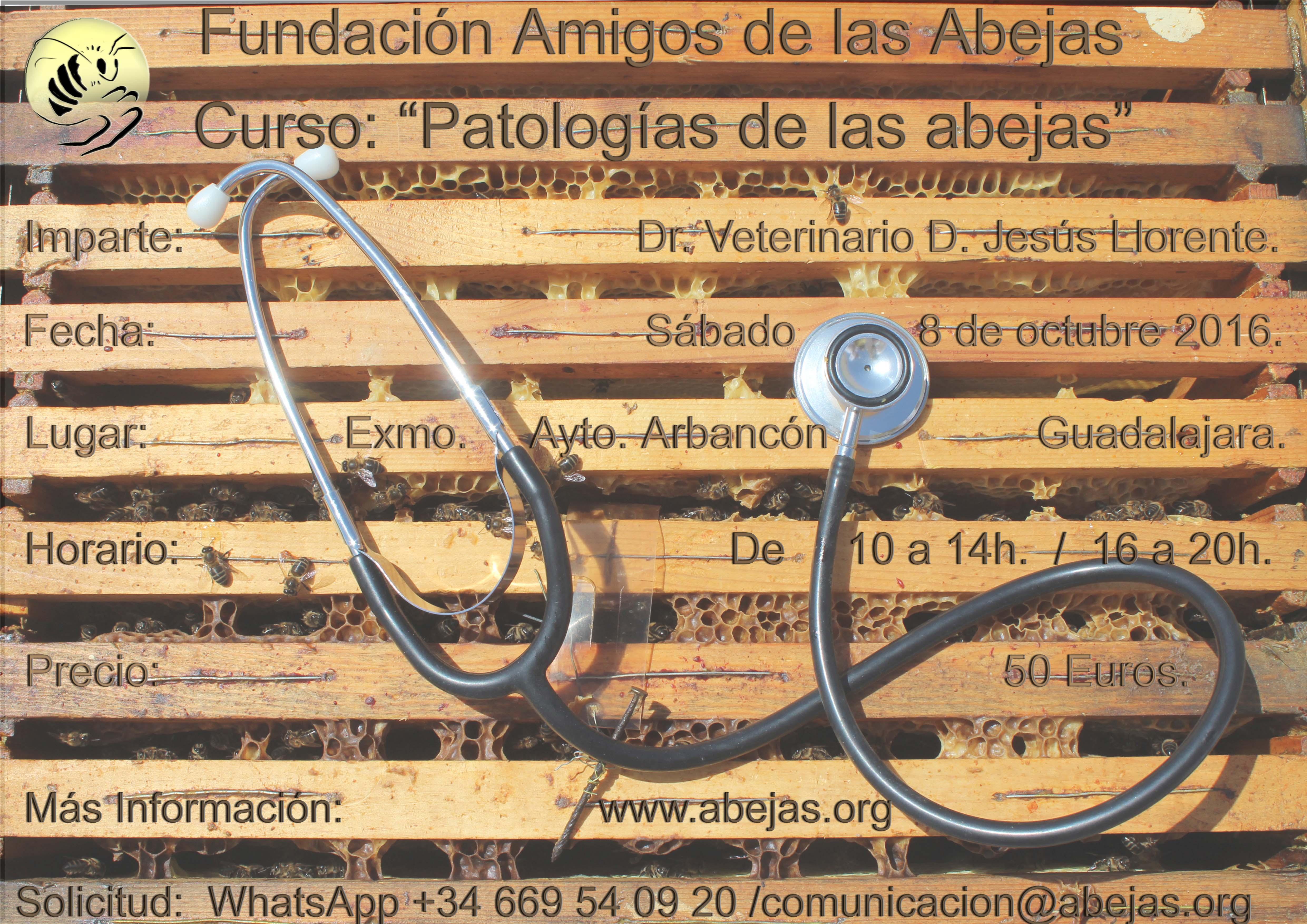 """Curso de la FAdA: """"Patologías de las Abejas"""", 8 de Octubre, Arbancón ..."""