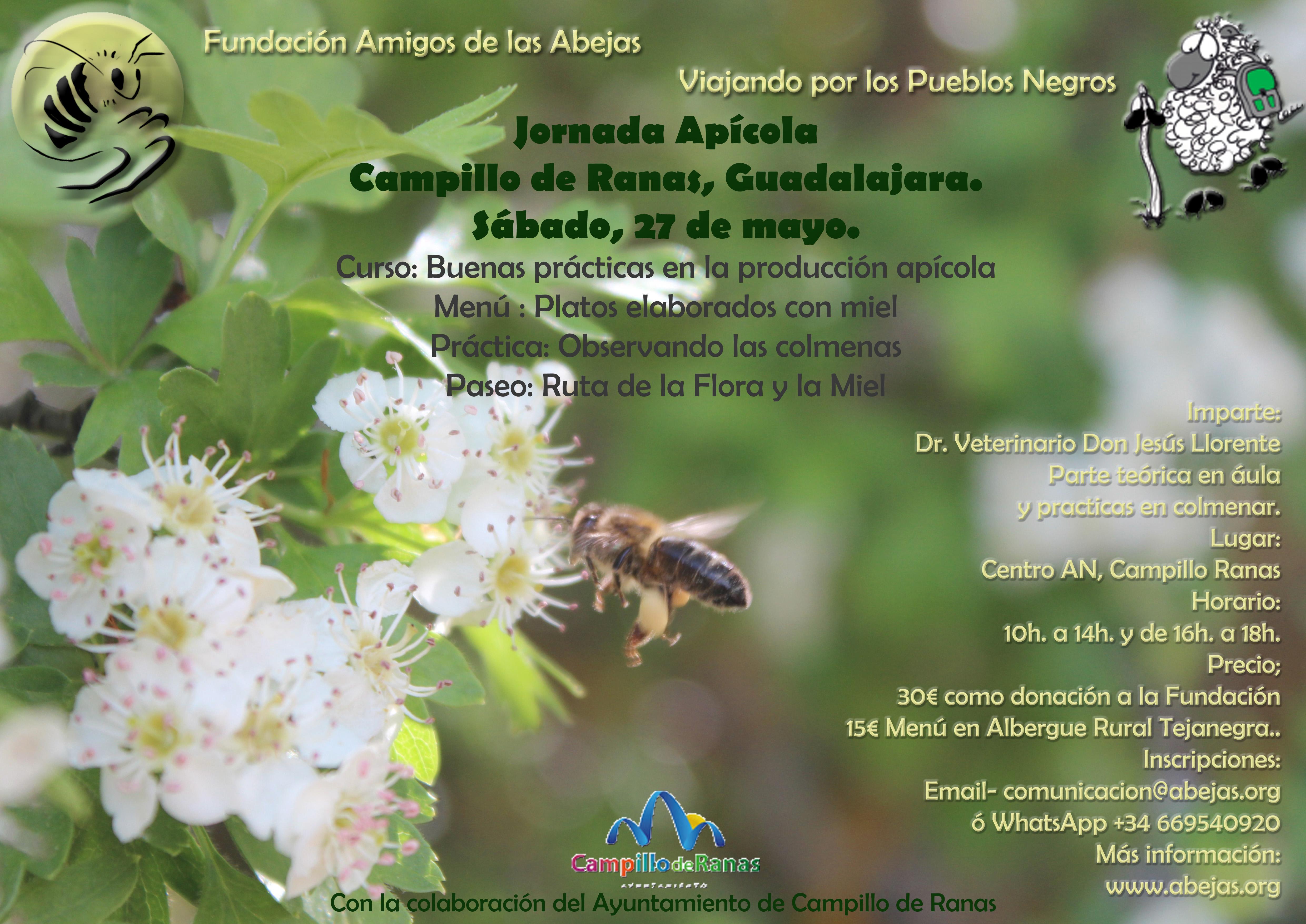 Jornada Apícola en Campillo de Ranas, Guadalajara. Sábado 27 mayo ...