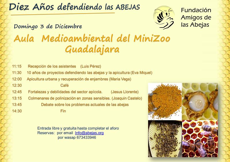 Diez años defendiendo las abejas y la apicultura | Fundación Amigos ...